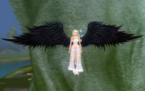Wings of Winged Elves (Black).png
