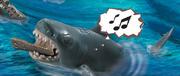 SharkThinkingmusic.png
