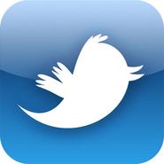 Twitter icon-1