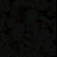 Darkrocks