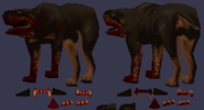 RottweilerTexture