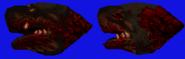 RottweilerTextureHead
