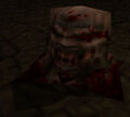 Ogre gibbed head