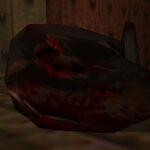 Rottweiler gibbed head.jpg