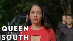 Queen Of The South Wiki Fandom