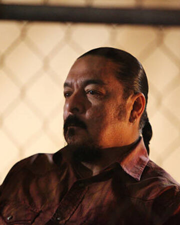 Tonto Queen Of The South Wiki Fandom