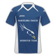 Eagles away.png