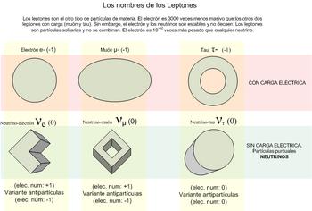 Leptones.png