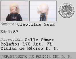 Cleotilde Seca.png