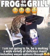 Frog on grill moment