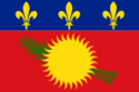 Flag of Guadeloupe (local) variant.png