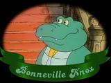 Bonneville Knox