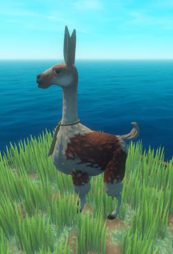 Llama Type 2.png