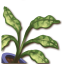 Tangaroa Plant1.png