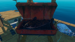 Cooked Catfish on Advanced Grill.png