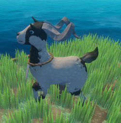 Goat Type 2.png