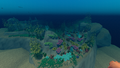 Small Island 6 underwater.png