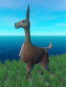 Llama Type 1.png