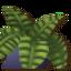 Tangaroa Plant4.png
