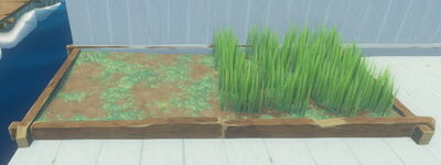 Raft - Grass Plot.jpg