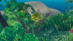 Yellow Flower on island.png