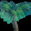 Манговое дерево.png