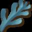 Серебряные водоросли.png