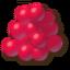 Красные ягоды.png