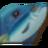Мелкая рыба.png