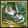 Archive-Owl Sage