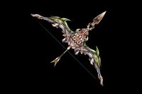 Star Wind Bow Hesperos