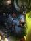 Longbeard-10-icon.png