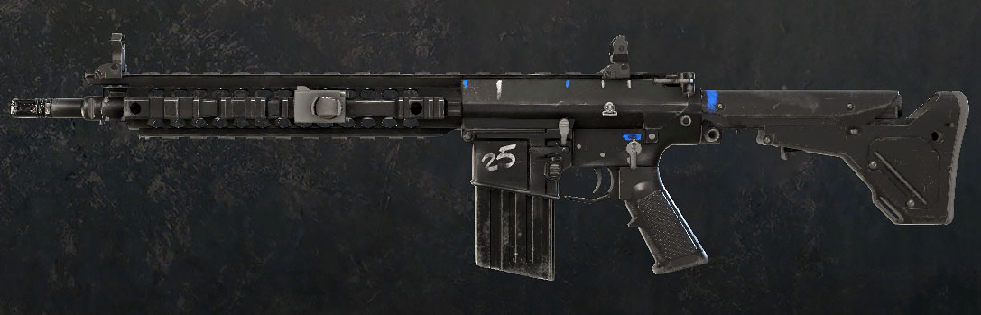 SR-25/Siege