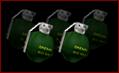 Frag Grenade/R6