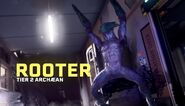 Extraction Rooter