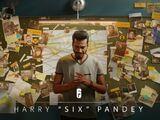 Harry Pandey