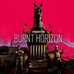 Burnt Horizon