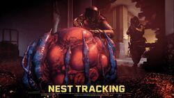 Nest Tracking.jpeg