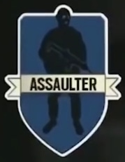 Assaulter