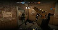 Siege Golden Gun