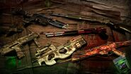Doktor's Curse Weapon Skins