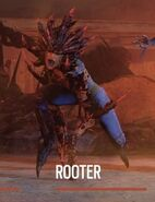 Outbreak Rooter