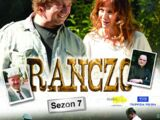 Seria VII (DVD)