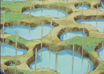 Jusenkyo anime.jpg
