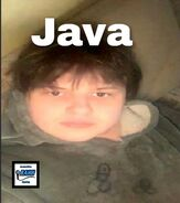 Java Album Cover