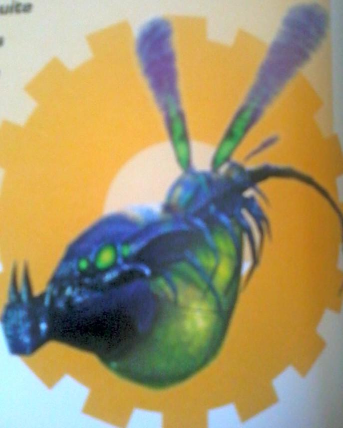Breegus Wasp