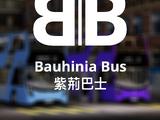 Bauhinia Bus