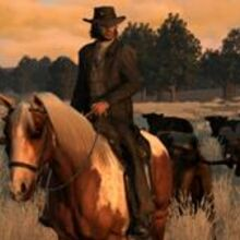 300px-Marston.cattle.suit.jpg