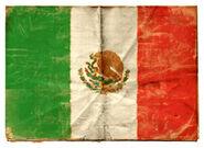 Bandera RDR