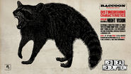 Reddeadredemption raccoon 1280x720